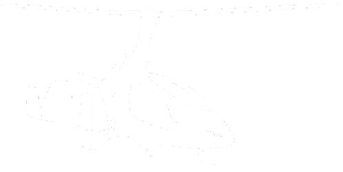 Logo The Gyroplane Revolution